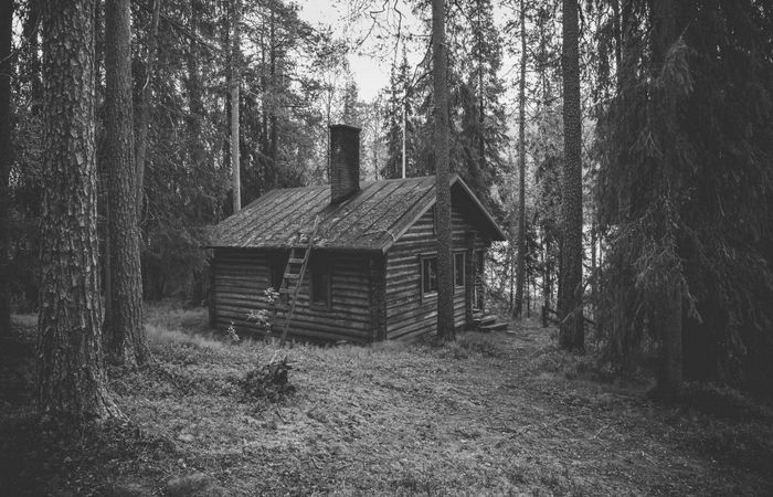 1920x1080_px_Cabin_forest_Pine_Trees-1350497